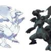 Trucos Pokemon Blanco y Negro para Nintendo DS